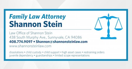 Family Law - Stein